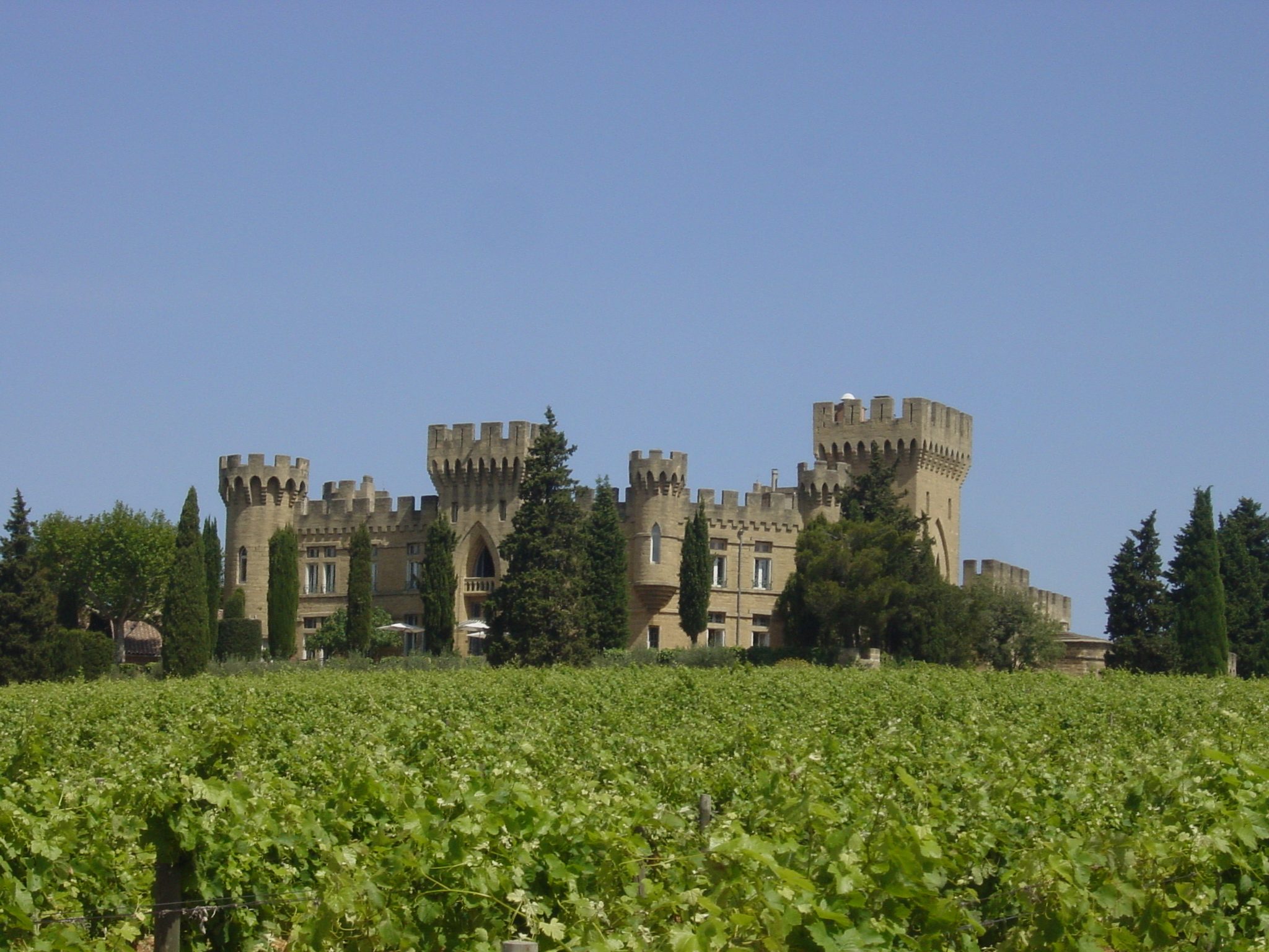 Castle in the middle of the vineyards Provence